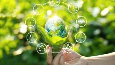 Photo of Sustainability Reporting: Special Tips for Beginners